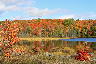Autumn at Hay Lake near Whitney, Ontario