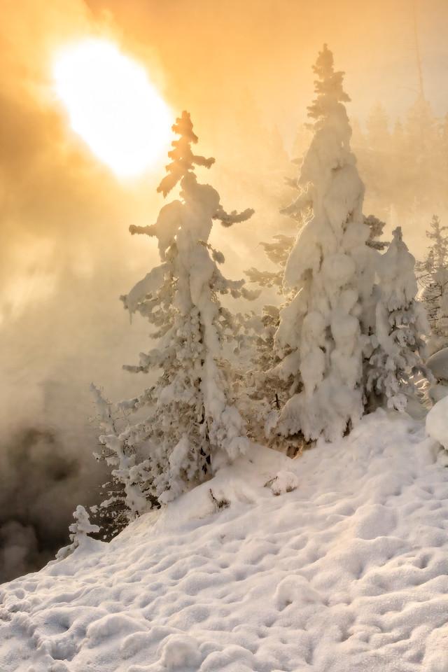 Yellowstone Sun