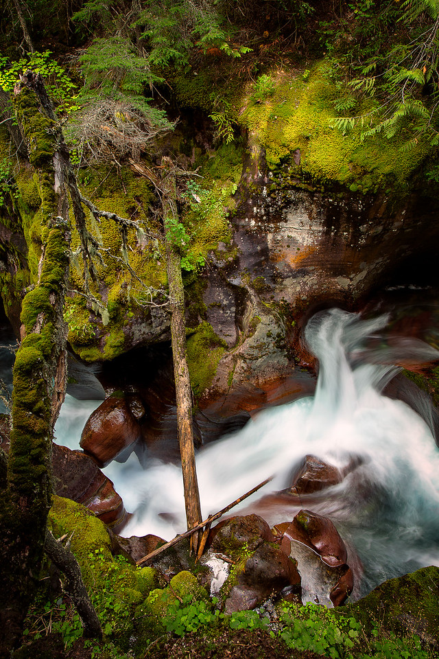 "Avalanche Creek Runoff 24""x36"" Stretched Canvas $199.99"