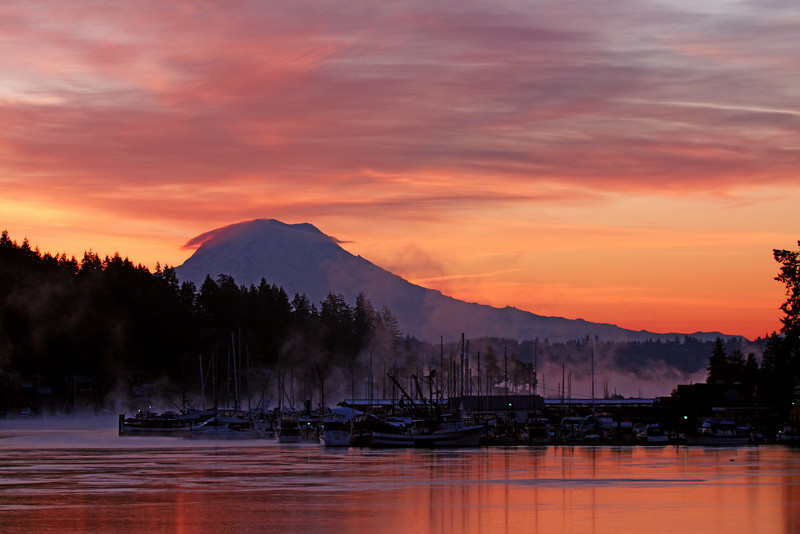 ~Gig Harbor Freeze~