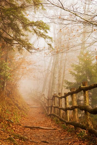 Appalachain Trail