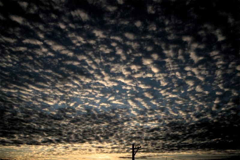 Dawn, 12-02-2009