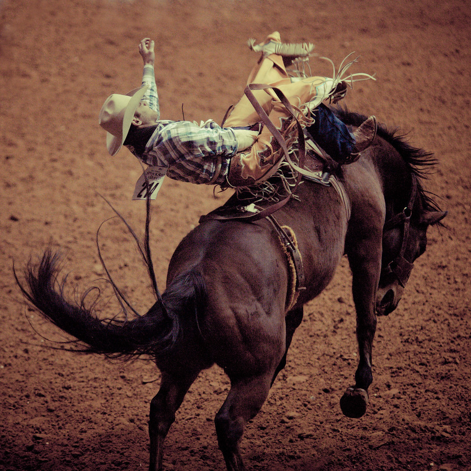 Ride Cowboy Ride, Plate 3
