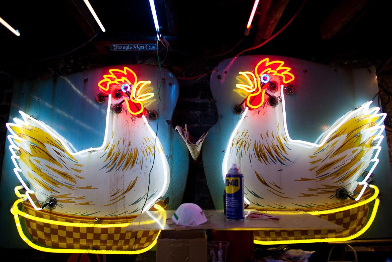 Pair of Hens
