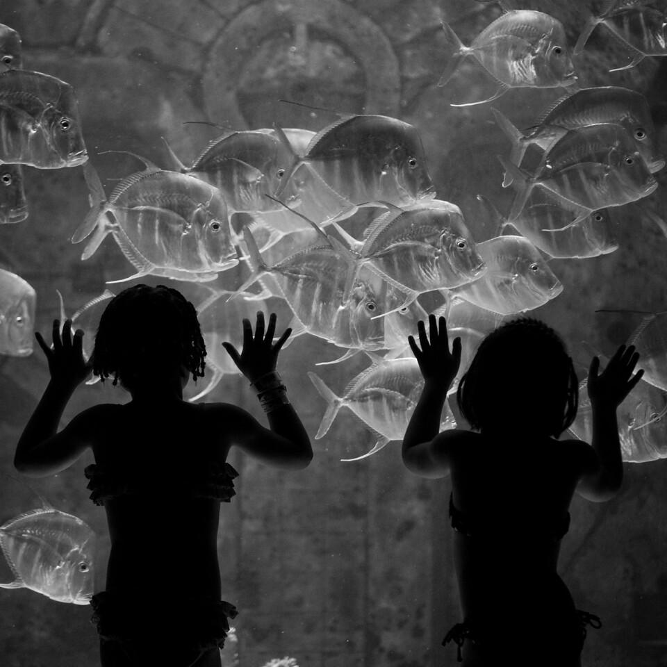 Underwater Sisters