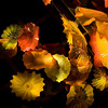 Chihuly_22