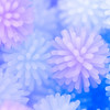 Snow Fall Softly