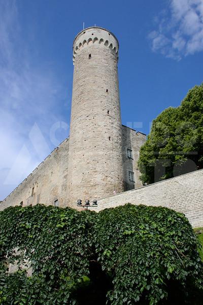 Tallinn 20090725 205 Toompea Castle M