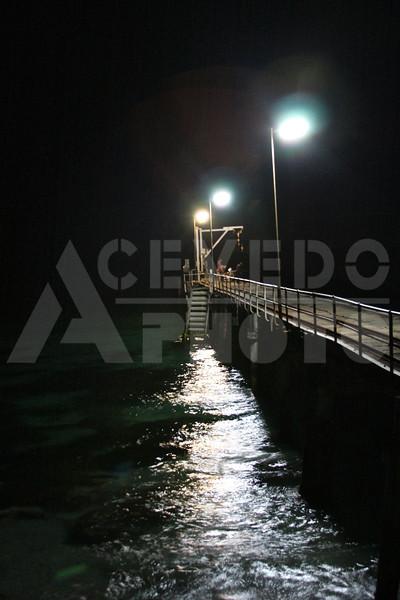 KI 20111013 479 The Penquins & The Pier M