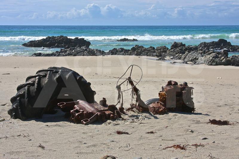 KI 20111014 327 Snelling Beach M