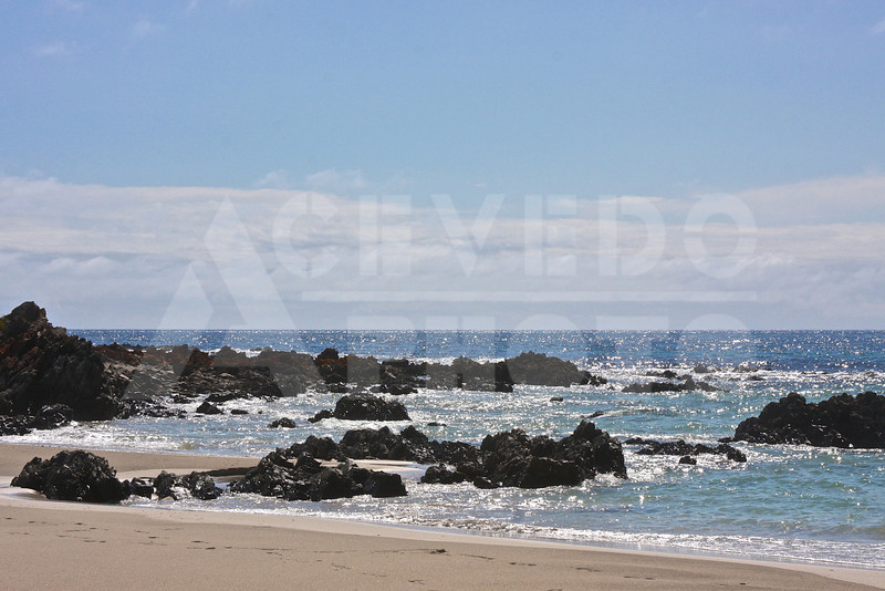 KI 20111014 305 Snelling Beach M