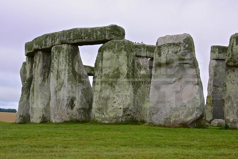 London 20090716 192 Salisbury - Stonehenge M