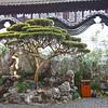 Shanghai 20130304 203 Yuyuan Garden M