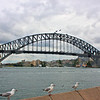 Sydney 20111006 066 Harbour Bridge M