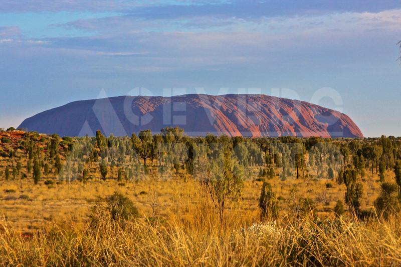 Uluru 20111010 072 Sounds of Silence Dinner - Uluru M