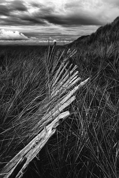 Coastal Fences