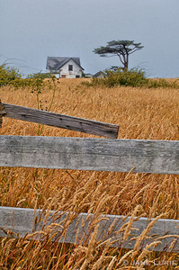 Fence and Farmhouse II, Sea Ranch, CA