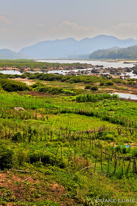 Farms and Fences, Mekong River, Laos