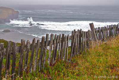Fence and Crashing Surf, Sea Ranch, CA