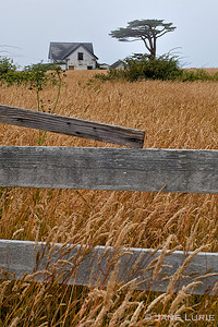 Fence and Farmhouse, Sea Ranch, CA