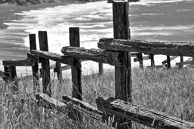 Fence and White Waves, Marin