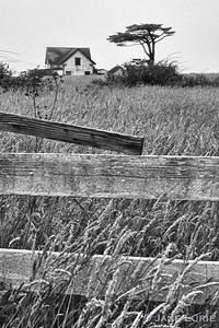 Fence and Farmhouse, Black and White
