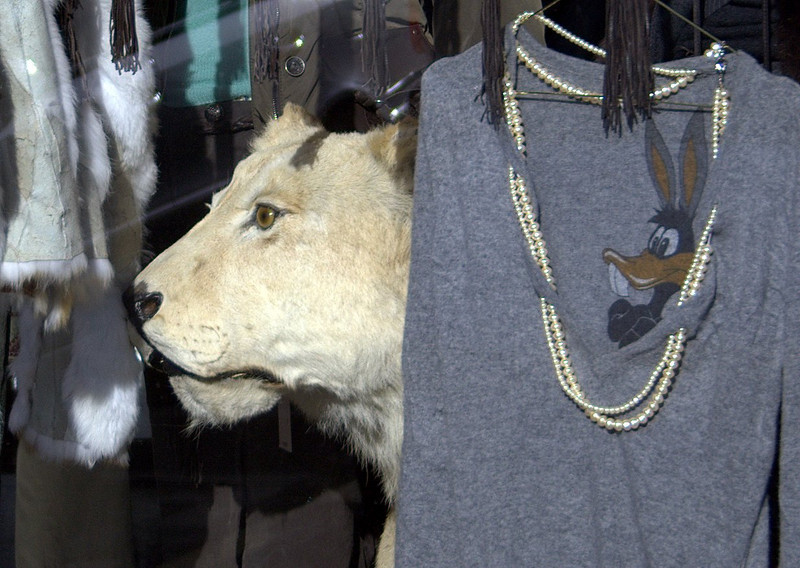 """The lion is not for sale""<br /> Paris, France"