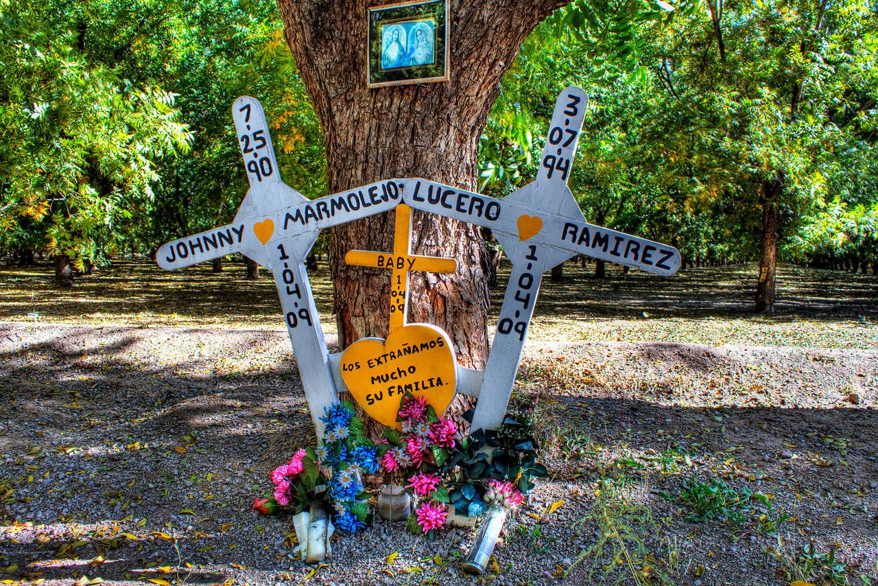 Roadside Memorial on Highway 28<br /> La Mesa, New Mexico