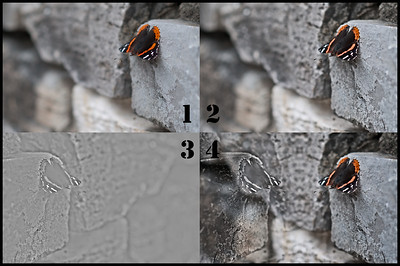 Friday August 10, 2012  Ghost of Butterflies Past Explained  Happy Friday, everybody! Thank you for all of the comments and questions on yesterday's post. Today, I thought I'd share with you the process of making it.  Tile 1: The original image Tile 2: The original image with the detail mask over it. (This is a Kubota action called Enter the Dragon Old World Color) Tile 3: The mask has been flipped and the background layer (along with the premask layer) has been hidden so you can see what the mask looks like by itself. It is somewhat transparent and lets some details from anything beneath it show through.  Tile 4: The final image with all the layers showing.  I actually discovered this process accidentally on another image. But the image is a little too stirring to share just yet. I am saving that image for a specific day.