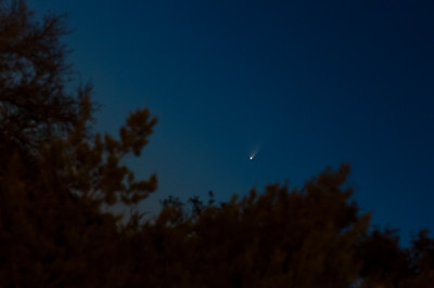 """The PanSTARRS comet on March 15, 2013. Taken from the Pinnacle parking lot in southwest Austin (http://goo.gl/maps/eScnw).   Taken with a Nikon D90, 70-200/2.5 @ 200mm, piggybacked on a co-worker's 4"""" refractor telescope to aid in aiming (the co-worked does not have a T-mount for his scope yet...);  5 sec, F8, ISO 800.  My (david's) lens envy extends to telescopes now, too...  *sigh*"""