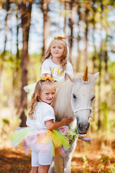 Four year old twin birthday session | Unicorns