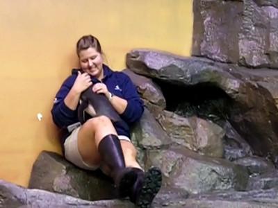 12/14/2010 (B) ***Get your penguin hugs here!***