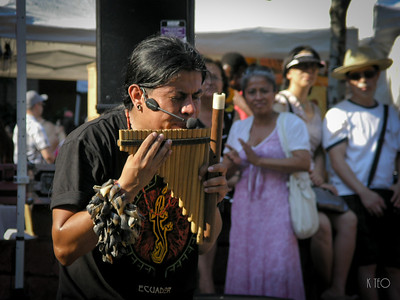 Ecuadorian Pan Pipe Player