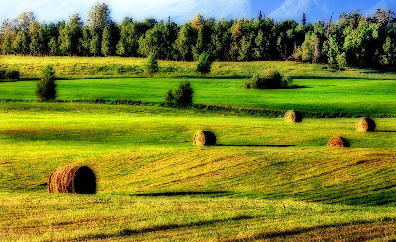 Haystack Hills*