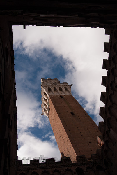 Torre del Campo, Siena