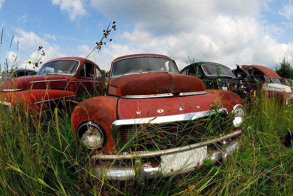 Classic Volvo at the the Volvo Graveyard