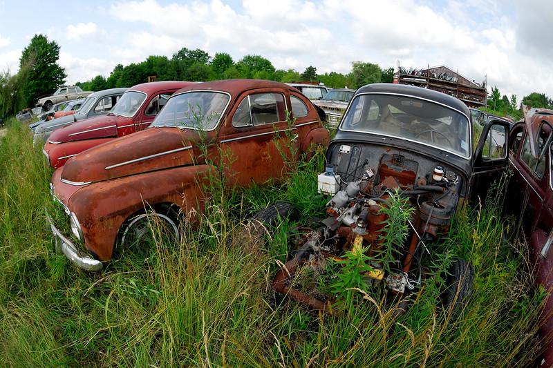 Fisheye Shot of Old Volvos