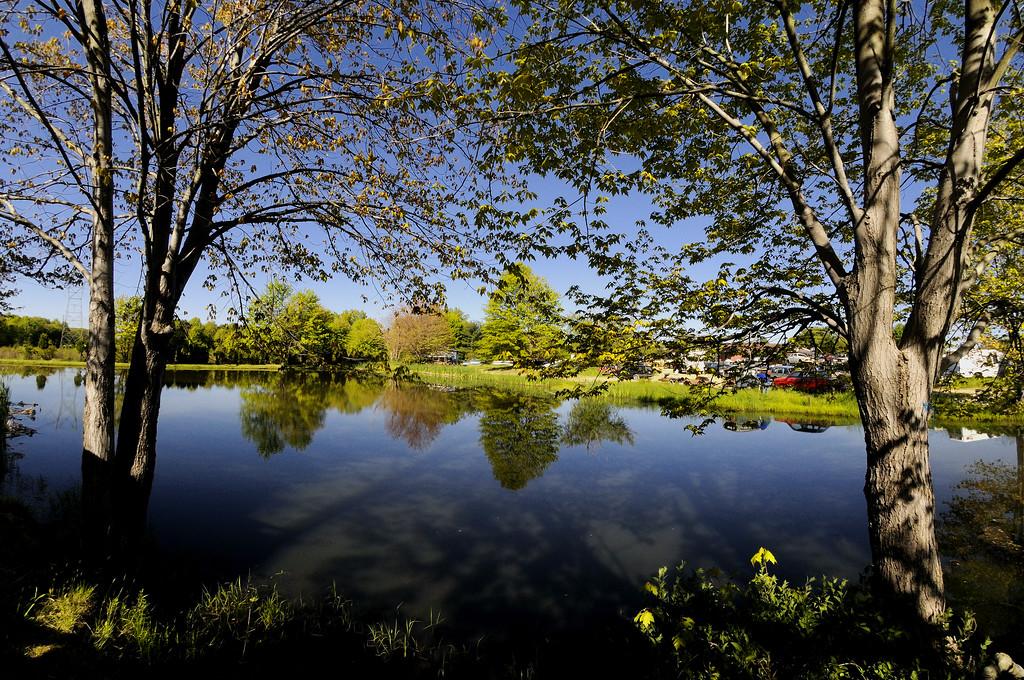 Junkyard Pond
