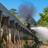 2014 Texas State Railroad Railfan Photo Train Ride