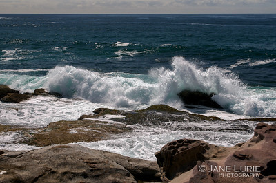 Surf and Rocks, Bondi