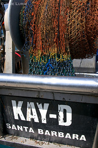 Kay-D and Nets, Santa Barbara