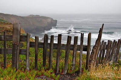 Fence and Coast, Sea Ranch
