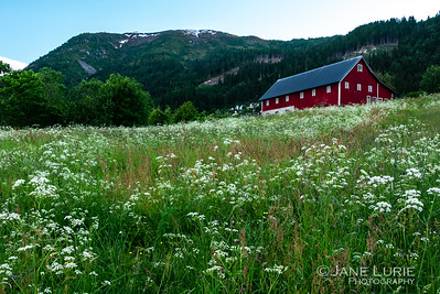 Red Barn and Field, Norway