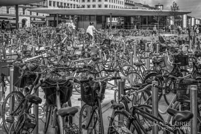 Bicyles! Bicycles! Copenhagen