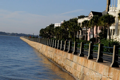 A fabulous morning on the battery in Charleston with its classic homes on the water.