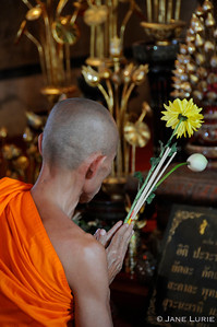 Morning Prayers. Chiang Mai, Thailand.