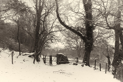 Snow Mar18 11