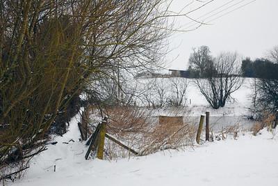 Snow Mar18 23