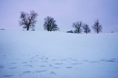 Snow Mar18 09