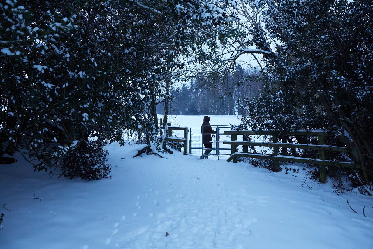 Snow Mar18 27